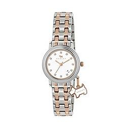 Radley - Ladies stainless steel and rose gold bracelet watch