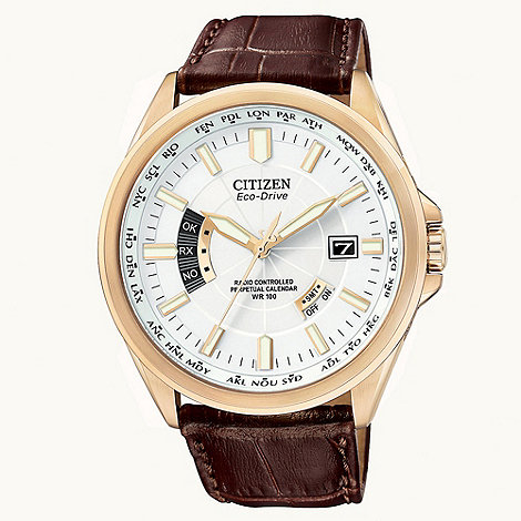 Citizen - Men+s brown eco-drive perpetual calender watch