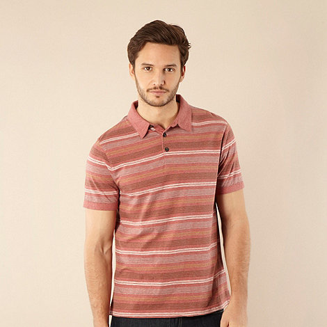 RJR.John Rocha - Big and tall rose striped polo shirt