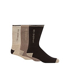 BEN SHERMAN - Pack of three beige ribbed sports socks