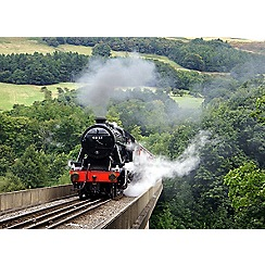 Activity Superstore - Steam Train gift experience day for 2