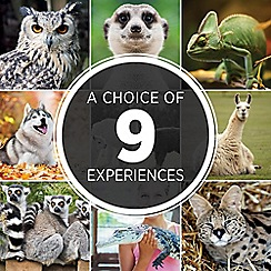 Activity Superstore - Animal Encounters gift experience