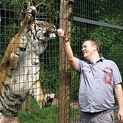 Gift Experiences - Feed the Big Cats