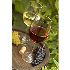 Gift Experiences - Vineyard Tour and Tasting for Two