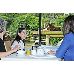 Gift Experiences - Breakfast with the Tigers for Two