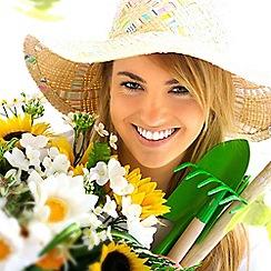 Gift Experiences - Flower Arranging Workshop