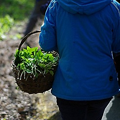 Activity Superstore - Wild Food Foraging and Cookery Course gift experience day