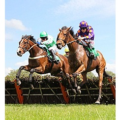 Gift Experiences - Classic Race Day at Lingfield Park with Lunch for Two