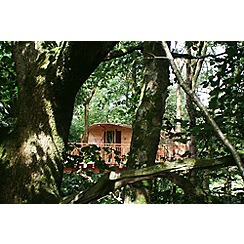 Gift Experiences - Two Night Tree House Escape for Two