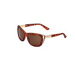 Gionni - Brown torta cat eye sunglasses