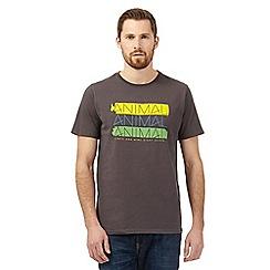 Animal - Grey logo print t-shirt