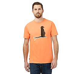 Animal - Orange meerkat t-shirt