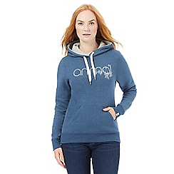 Animal - Mid blue logo applique hoodie