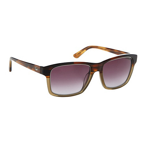 Lacoste - Brown tortoise shell plastic D-frame sunglasses