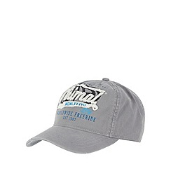 Animal - Grey frayed logo applique cap