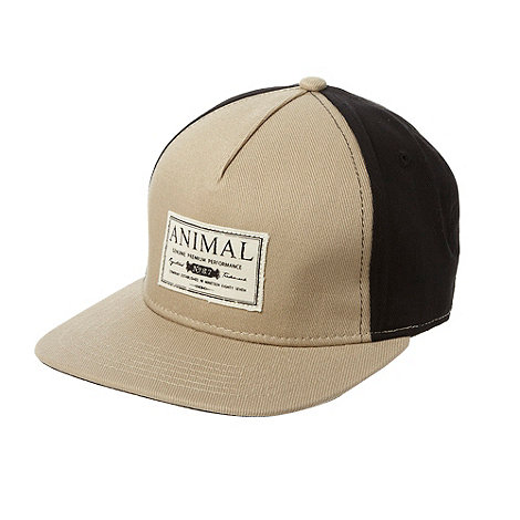 Animal - Taupe colour blocked baseball cap