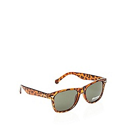 Converse - Brown tortoiseshell square sunglasses