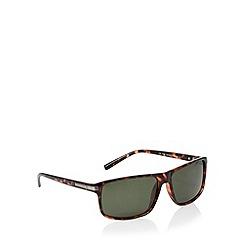 Polaroid - Green square fashion plastic polarised sunglasses