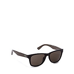 Lacoste - Brown and black D-frame sunglasses