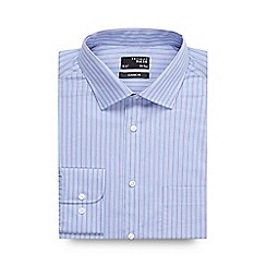 Thomas Nash - Big and tall blue striped cotton regular fit shirt