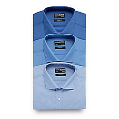 The Collection - Pack of three blue easy care regular fit shirts