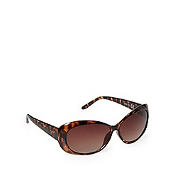 Beach Collection - Brown tortoiseshell wide temple sunglasses