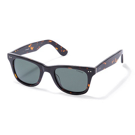 Polaroid - Brown plastic wayfarer sunglasses
