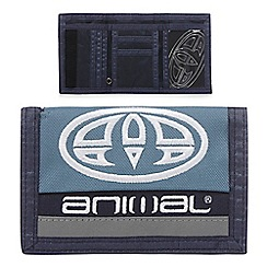 Animal - Blue logo print wallet
