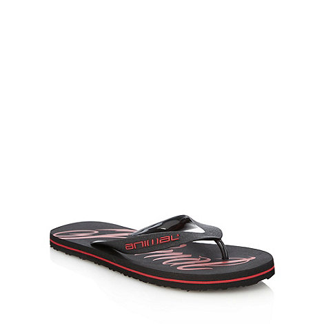 Animal - Black oversized logo printed flip flops