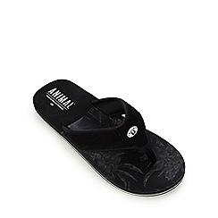 Animal - Black soft toe flip flops
