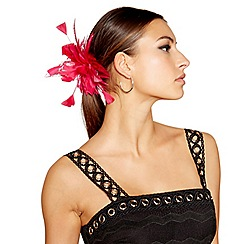 Star by Julien Macdonald - Pink tropical feather hair clip