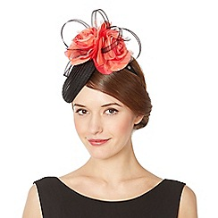 Top Hat by Stephen Jones - Designer black double rose button fascinator