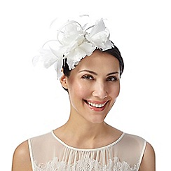 Debut - Ivory looped feather detail fascinator
