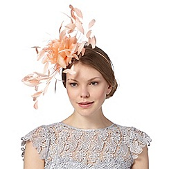 Star by Julien Macdonald - Designer light peach feather flower fascinator