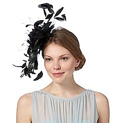 Star by Julien MacDonald - Designer black feather flower fascinator