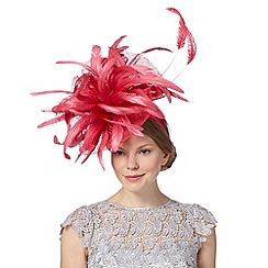 Star by Julien MacDonald - Designer bright pink curled feather fascinator