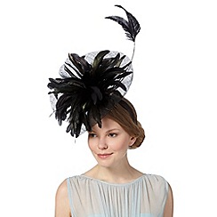 Star by Julien MacDonald - Designer black curled feather fascinator