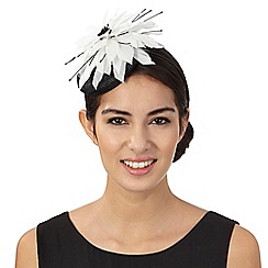 Star by Julien Macdonald - Off white flower fascinator