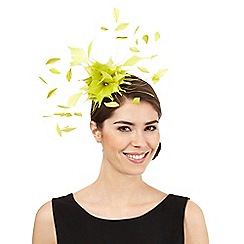 Star by Julien Macdonald - Lime dandelion spray fascinator