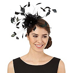 Star by Julien Macdonald - Black dandelion spray fascinator