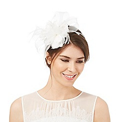 Debut - Ivory feather flower band fascinator