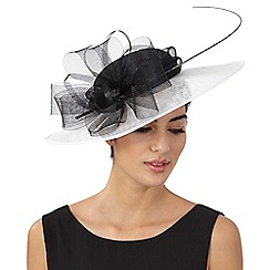Hatbox - White flower saucer fascinator