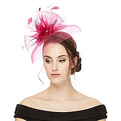 Star by Julien Macdonald - Bright pink floral fascinator
