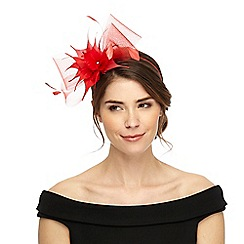 Star by Julien Macdonald - Red feather mesh headband fascinator