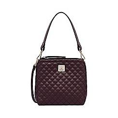 Fiorelli - Plum Beaumont mini satchel
