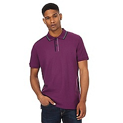 Maine New England - Purple tipped collar and placket polo shirt