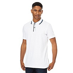 Maine New England - Big and tall white tipped collar and placket polo shirt