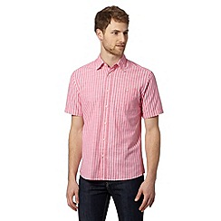 Maine New England - Big and tall bright pink bengal striped shirt