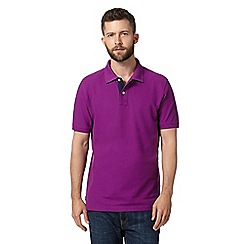 Maine New England - Big and tall bright purple plain pique polo shirt