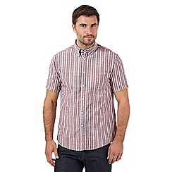 Maine New England - Big and tall maroon striped oxford shirt